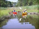 Kayakers on Jakes Gut, off Manklin Creek in Ocean Pines.
