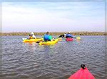 4/25/2009: A group of paddlers participates in one of the Delmarva Birding Weekend guided trips on the Mispillion River near Milford, DE.  The river is bordered by grassy marsh (no shade) and is home