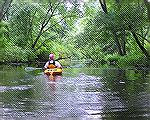 8/1/2009 – A peaceful section of the Cow Bridge Branch of the Indian River.